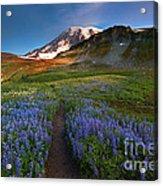 Trail To Majesty Acrylic Print