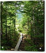 Trail To Sandy Stream Pond Acrylic Print