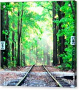 Train Tracks In Forest Acrylic Print