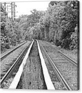 Train Tracks Running Through The Forest Acrylic Print