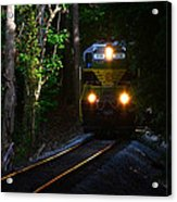 Rails Through The Wilderness Acrylic Print
