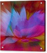 Trancendent Lotus Acrylic Print