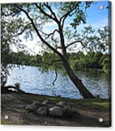 Tranquil Lake Acrylic Print