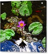 Tranquility - Lotus Flower Koi Pond By Sharon Cummings Acrylic Print