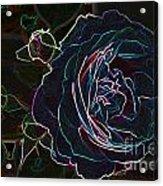 Transparent Rose Acrylic Print