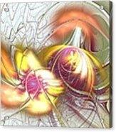 Transwarp Acrylic Print