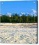 Trapper Creek And Mount Mckinley, Alaska Acrylic Print