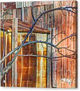 Tree And Rust Acrylic Print by Jim Wright