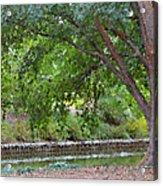 Tree At Norfolk Botanical Garden 4 Acrylic Print