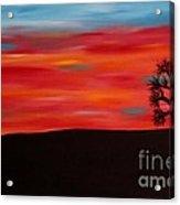 Tree At Sunset II Acrylic Print