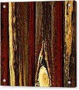 Tree Bark Acrylic Print