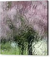 Tree Blossoms In The Rain Acrylic Print