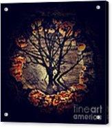 Tree Circle 2 Acrylic Print by Milliande Demetriou