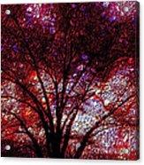 Tree Emboss Acrylic Print