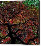 Tree Fabrica Abstract Graphic Acrylic Print