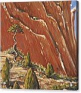 Tree Hill Acrylic Print
