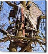 Tree Hut Acrylic Print