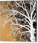 Tree In Abstract Acrylic Print