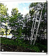Tree Lined Lake Acrylic Print by Dianne  Lacourciere
