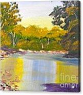 Tree Lined River Acrylic Print