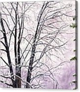 Tree Memories Acrylic Print