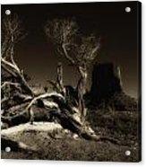 Tree Monument Valley Acrylic Print