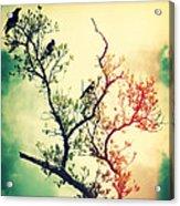 Tree Of Crows II Lights Acrylic Print