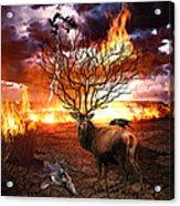 Tree Of Death Acrylic Print