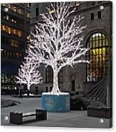 Tree Of Lights I Acrylic Print