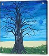 Tree Of Man Acrylic Print