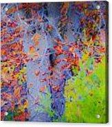 Tree Of Many Colors Acrylic Print