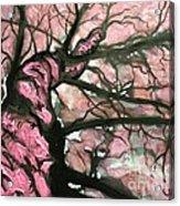 Tree Of Pink Acrylic Print
