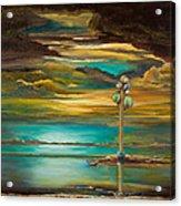 Tree Of Utah Acrylic Print