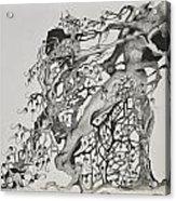 Tree People Acrylic Print by Glenn Calloway