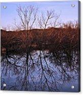 tree reflection on Wv pond Acrylic Print