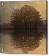 Tree Reflections II Acrylic Print