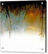 Tree Reflections IIi Acrylic Print