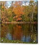 Tree Reflects Into The River Acrylic Print