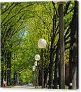 Tree Ride Acrylic Print