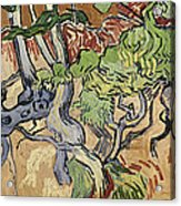 Tree Roots Acrylic Print by Vincent Van Gogh