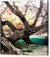 Tree Series 01 Acrylic Print