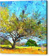 Tree Series 64 Acrylic Print