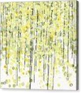 Tree Series3 Acrylic Print