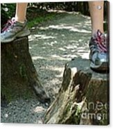 Tree Stump Stilts Acrylic Print