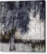 Tree Through Sheer Curtains Acrylic Print