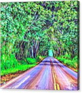 Tree Tunnel Kauai Acrylic Print