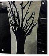 Tree Vase Acrylic Print by Lee Farley