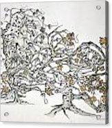 Tree Witch Acrylic Print by Glenn Calloway
