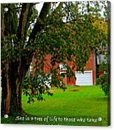 Tree With Scripture Acrylic Print