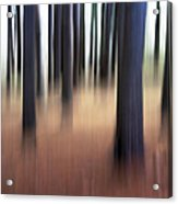 Trees #3 Acrylic Print